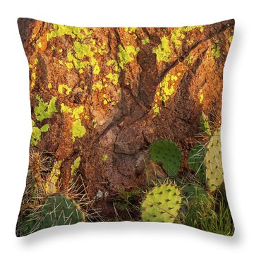 Painted Rock Throw Pillow by Iris Greenwell