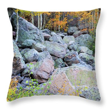 Throw Pillow featuring the photograph Painted Rocks by David Chandler