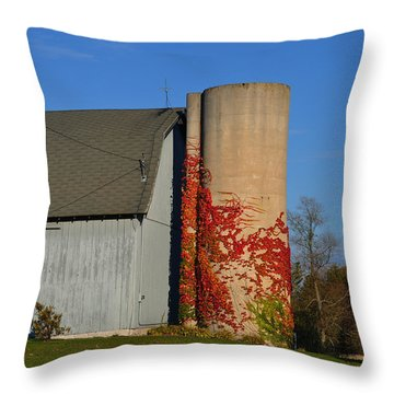 Painted Silo Throw Pillow