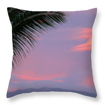 Throw Pillow featuring the photograph Painted Sky by Debbie Karnes