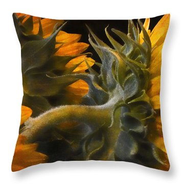 Throw Pillow featuring the photograph Painted Sun Flowers by John Rivera