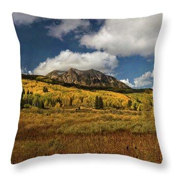 Painterly Kebler Pass Throw Pillow