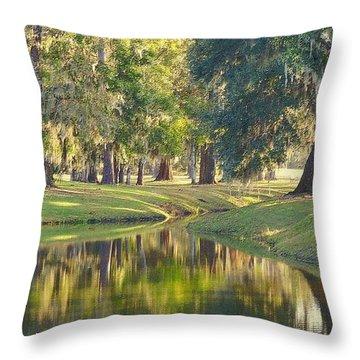 Painting Dixie Throw Pillow