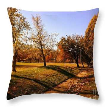 Painting With Shadows - Setting Sun Throw Pillow