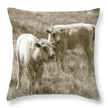 Throw Pillow featuring the photograph Pair Of Baby Buffalos by Rebecca Margraf