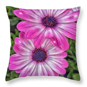 Pair Of Daisys Throw Pillow