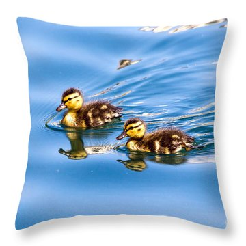 Duckling Duo Throw Pillow