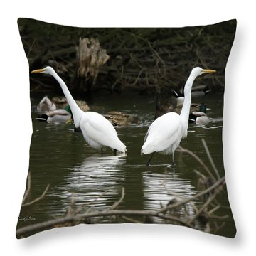 Pair Of Egrets Throw Pillow