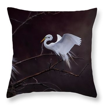 Pair Of Egrets Throw Pillow by Kelly Marquardt