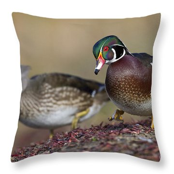 Pair Of Woodies Throw Pillow