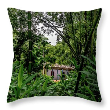 Paiseje Colombiano #10 Throw Pillow