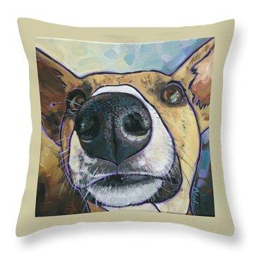 Paisley Throw Pillow