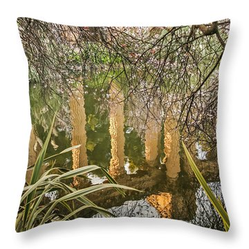 Palace Grounds 2007 Throw Pillow
