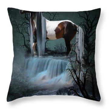 Pinto  Falls Throw Pillow