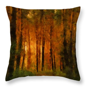 Palava Valo Throw Pillow by Greg Collins