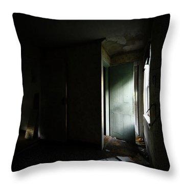 Pale Green Door Throw Pillow