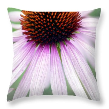 Pale Grey Throw Pillow by Marty Koch