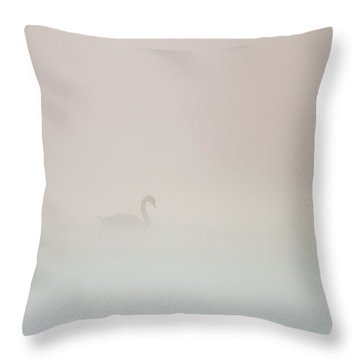 Pale Outline In The Fog Throw Pillow