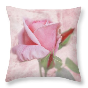 Pale Pink Rose Throw Pillow