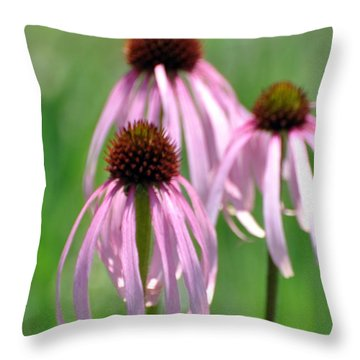 Pale Purple 3 Throw Pillow by Marty Koch