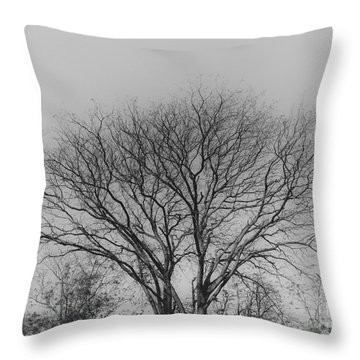 Pale Shades Throw Pillow