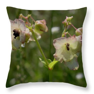 Pale Umbrella Wort Throw Pillow