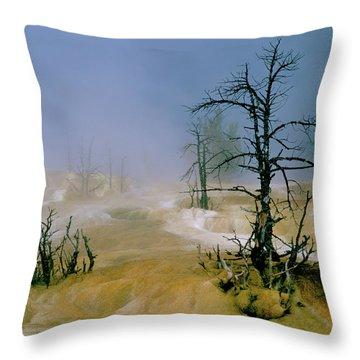 Palette Spring Throw Pillow by Ed  Riche