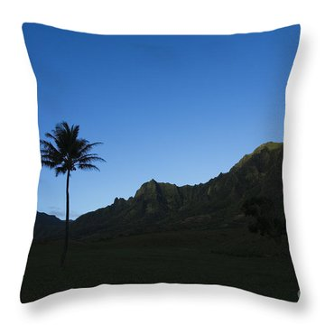 Palm And Blue Sky Throw Pillow by Dana Edmunds - Printscapes