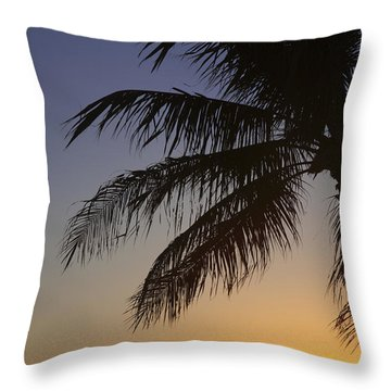 Palm At Sunset Throw Pillow by Brandon Tabiolo - Printscapes