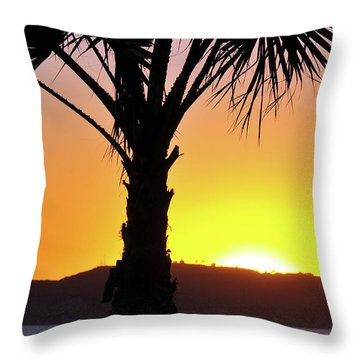 Throw Pillow featuring the photograph Palm At Sunset by Howard Bagley
