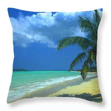 Palm Beach In The Keys Throw Pillow