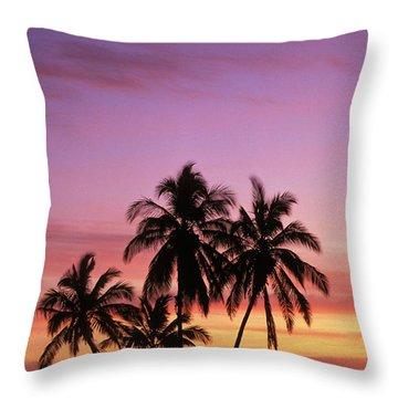 Palm Cluster Throw Pillow by Allan Seiden - Printscapes