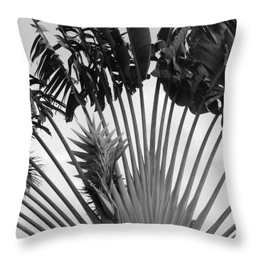 Palm Frons Throw Pillow by Rob Hans