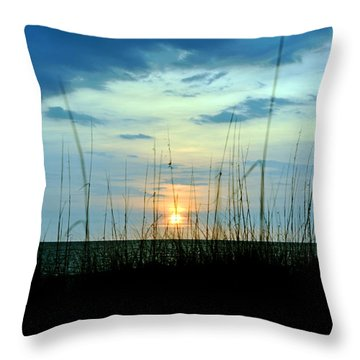 Palm Island Throw Pillow by Anthony Baatz