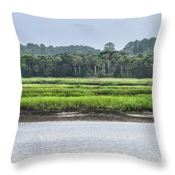 Throw Pillow featuring the photograph Palm Island by Margaret Palmer