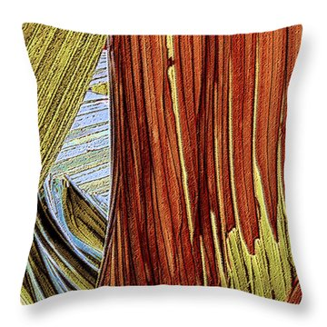 Palm Leaf Abstract Throw Pillow by Ben and Raisa Gertsberg