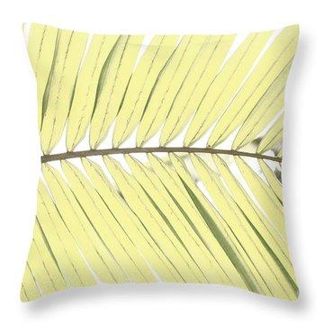 Palm Leaf Throw Pillow by Gaspar Avila