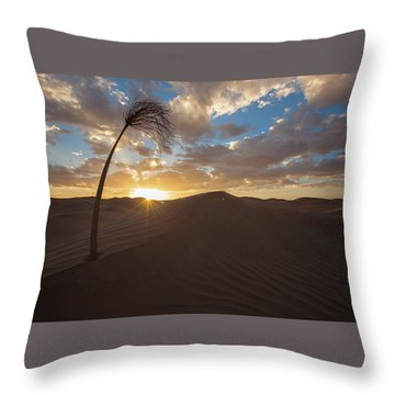 Palm On Dune Throw Pillow