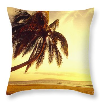 Palm Over The Beach Throw Pillow by Ron Dahlquist - Printscapes
