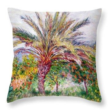 Palm Tree At Bordighera Throw Pillow