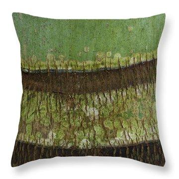 Throw Pillow featuring the photograph Palm Tree Bark Texture by Charmian Vistaunet