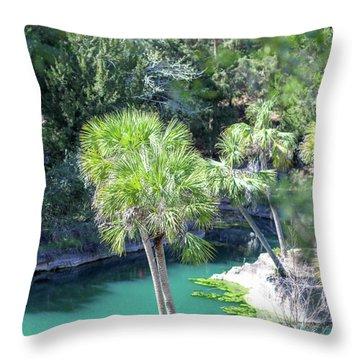 Palm Tree Blue Pond Throw Pillow