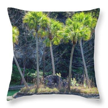 Palm Tree Island Throw Pillow