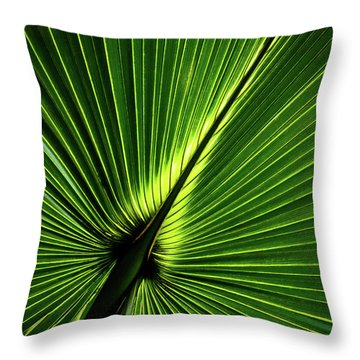 Palm Tree With Back-light Throw Pillow