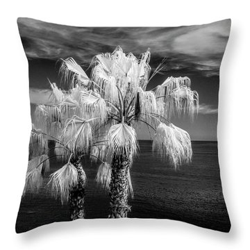 Throw Pillow featuring the photograph Palm Trees At Laguna Beach In Infrared Black And White by Randall Nyhof