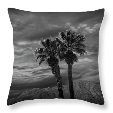 Throw Pillow featuring the photograph Palm Trees By Borrego Springs In Black And White by Randall Nyhof