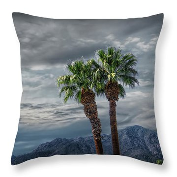 Throw Pillow featuring the photograph Palm Trees By Borrego Springs In The Anza-borrego Desert State Park by Randall Nyhof