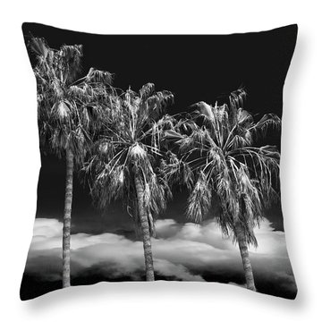 Throw Pillow featuring the photograph Palm Trees In Black And White On Cabrillo Beach by Randall Nyhof
