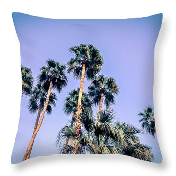 Palm Trees Palm Springs Summer Throw Pillow