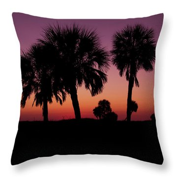 Throw Pillow featuring the photograph Palm Trees Silhouette by Joel Witmeyer